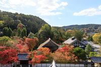 南禅寺の紅葉 - ぴんぼけふぉとぶろぐ2