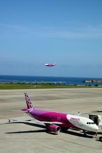 桃と桃 Part2 - 南の島の飛行機日記