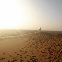 デザートサファリ前編お迎え・砂漠の遊びかた - かなりんたび