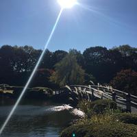 冬の陽だまり - 暮らしのマイルール