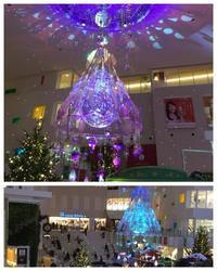 クリスマスプレゼント & レジ袋 & 病院 & ザル菊 - 晴れときどきドキドキうきうき