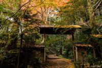 祐泉寺 - toshi の ならはまほろば