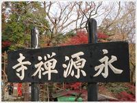 名古屋発、おひとり参加のツアー備忘録その3鶏足寺から永源寺へ - さくらおばちゃんの趣味悠遊