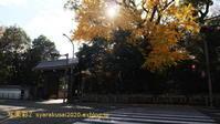 京都dddギャラーリーに行く - 写楽彩2