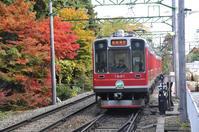 箱根の紅葉 - バリ島大好き