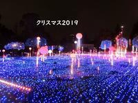 【東京ミッドタウンのクリスマス2019】 - お散歩アルバム・・春日和花粉日和