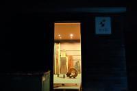 変な木・変な杢・変な材変しい木材倉庫 - SOLiD「無垢材セレクトカタログ」/ 材木店・製材所 新発田屋(シバタヤ)