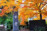 印西の古刹松虫寺の紅葉 - ぶらり散歩 ~四季折々フォト日記~