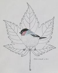 『#木の葉絵#leafart 』 麻の葉楓・鷽 - スケッチ感察ノート (Nature journal)
