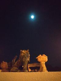 今夜も月が綺麗です。 - なんくるないさ~、ワンッ!!