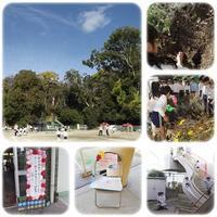 参観日 - ひのくま幼稚園のブログ