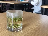 白(黄)化茶樹品種加工緑茶品質の講義@中国国際茶文化研究会 - お茶をどうぞ♪
