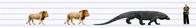 メガラニア(Megalania)とライオン - アニマル情報202X
