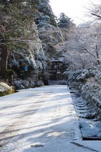 大山 - Taro's Photo
