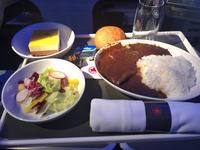 2019 Best of flight meal - Travel Diary