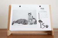 今年も来年も2019年12月15日 - きょうだい猫と仲良し暮らし