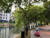 シンガポール街歩き2019  ベイサンズ噴水ショー - Breeze in Malaysia