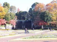 川口市立グリーンセンター - しらこばとWeblog