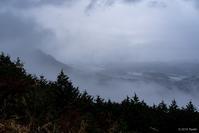雨の鳥見山1 - toshi の ならはまほろば