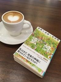 「蜜蜂と遠雷」上&下 - Kyoto Corgi Cafe