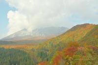 10月の山活⑳**大山、寄り道あれこれ - きまぐれ*風音・・kanon・・