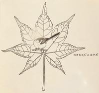 『#木の葉絵#leafart 』 大紅葉 ・柄長 - スケッチ感察ノート (Nature journal)