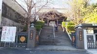 東京大仏・赤塚植物園そしてひびき庵でお蕎麦 - 柴犬 はなとわ日記