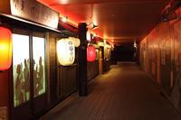 TOKYO MEGA ILLUMINATION 【9】 - 写真の記憶