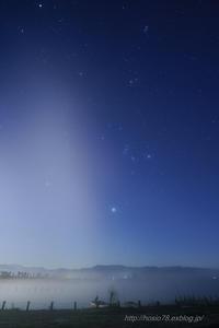 霧の福島潟 - デジタルで見ていた風景