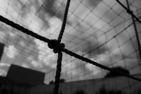 Goal Net - フォトな日々