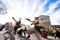 2019 バサラカーニバル『浜松学生連鰻陀羅』 - tamaranyのお散歩2