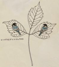 #木の葉絵#leafart 』三手楓・四十雀 - スケッチ感察ノート (Nature journal)