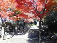 ひる散紅葉山公園 - 東京徒士組の会