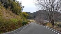 2020年1月のご案内/Information of Kumano Kodo from January - 熊野古道 歩きませんか? / Let's walk Kumano Kodo