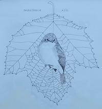 『#木の葉絵#leafart 』 鈴懸の木・目白 - スケッチ感察ノート (Nature journal)