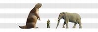 メガテリウム(Megatherium)とアフリカゾウ - アニマル情報202X