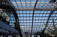 板橋区をぶらぶら その6 ~ 板橋区立熱帯環境植物館 - 「趣味はウォーキングでは無い」
