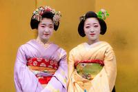 まねきの簪(ふみ幸、勝貴、とし七菜、ふく友梨、槇里子、美羽子、佳つ春、佳つ桃) - 花景色-K.W.C. PhotoBlog
