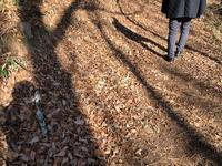 自分の影を見ながら歩けば・・・ - 風路のこぶちさわ日記