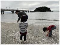 愛知県でのお出かけその2竹島海岸と竹島にある八百富神社(11月24日) - さくらおばちゃんの趣味悠遊