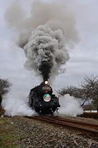 SLサンタトレイン - new 汽車の風景
