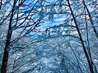 初雪 - 山谷彷徨