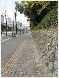 愛知県でのお出かけその3意外と近くにあったのに、初めての熱田神宮(11月28日) - さくらおばちゃんの趣味悠遊
