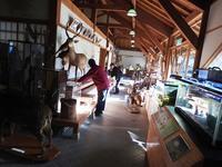 大掃除 - 千葉県いすみ環境と文化のさとセンター