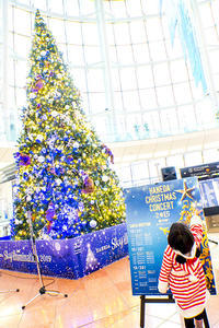 Merry Christmas - jinsnap(weblog on a snap shot)