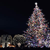 Merry christmas! - youmou