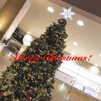 ☆★☆ Merry Christmas ☆★☆ - 麻倉あきらOfficial Blog『No Songs! No Life!』