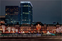 Christmas in Tokyo station - 光のメロディー