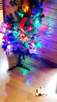 サンタが・・・ - 家づくり、遊び、そして子育ての日々。