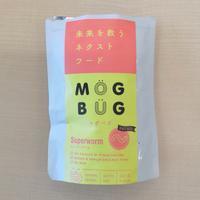 虫さん達のクリスマスプレゼント~☆ #昆虫食 - Entrepreneurshipを探る旅